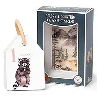 Berry Lane Color & Number Flash Cards for Toddlers   21 Illustrated Woodland Theme Toddler Flash Cards   Eco-Friendly Flashcards   Removable Ring