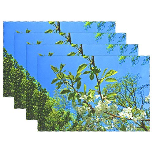 Trunk Flowering (Tree Foliage Blossom Flowering Flowering Tree Placemats Set Of 4 Heat Insulation Stain Resistant For Dining Table Durable Non-slip Kitchen Table Place Mats)