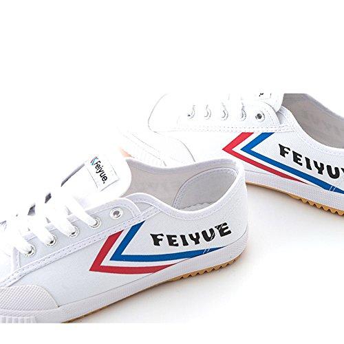 Feiyueシューズ、改善された, レトロ、 武道の靴、 カンフーシューズ、 キャンバスシューズ