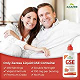 Zazzee Grapefruit Seed Extract (GSE) 4 Ounces, 480