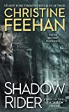 Shadow Rider (A Shadow Riders Novel Book 1)
