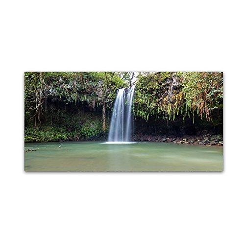 Twin Falls Maui by Pierre Leclerc, 12x24-Inch Canvas Wall - Maui Falls Twin