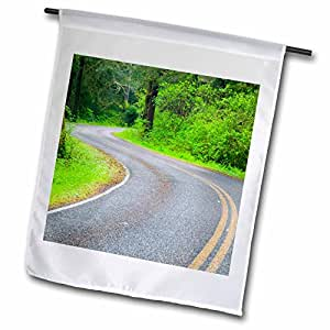 Danita Delimont - Rainforests - WA, Olympic NP, Northern Olympic Rainforest, Road - US48 TEG0238 - Terry Eggers - 18 x 27 inch Garden Flag (fl_96960_2)