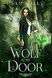 The Wolf At My Door