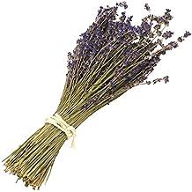 Missblue Lavender Bundle-Air Real Natural Dried Lavender Bundles,Freshly Harvested Royal Velvet Lavender Bundles for DIY Home and Party Wedding Decor (Purple)