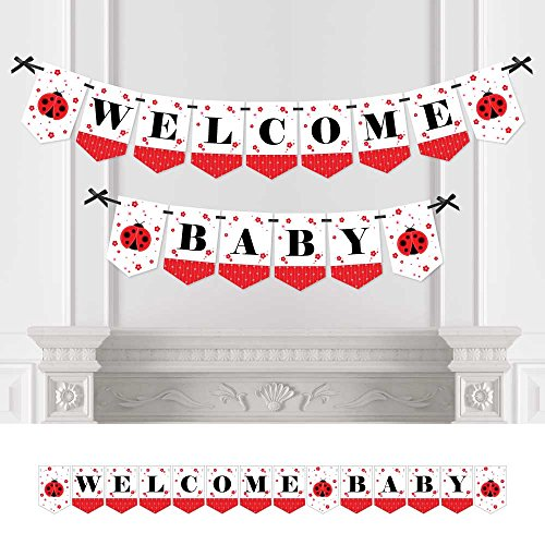 Big Dot of Happiness Modern Ladybug - Baby Shower Bunting Banner - Ladybug Party Decorations - Welcome Baby