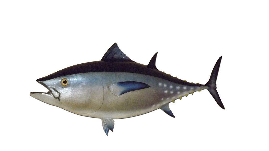 38'' Bluefin Tuna Half Sided Fish Mount Replica, Affordable Coastal Decor - Indoors Or Outside.