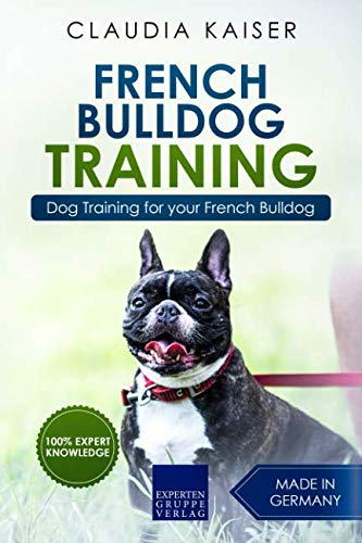 french bulldog guide - 5