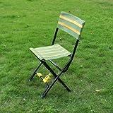 Bheema Multifunction Fishing Chair Portable Double Folding Fishing Stool