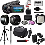 Sony FDR-AX53 4K Ultra HD Handycam Camcorder Video Camera + 60 Tripod + 67 Monopod + SD Card + Filter + Bag + Extra Memory Card + LED Light + Cleaning Set + 20 Piece Accessory Kit