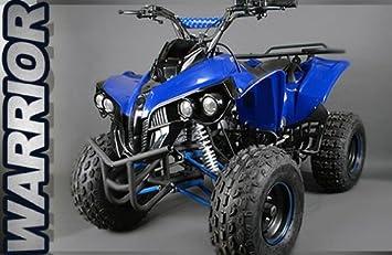 a5796603df7 XXL 125cc Quad Warrior Children's Quad Children's vehicle Atv Midi ...
