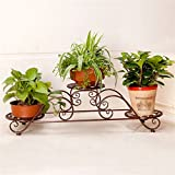 AIDELAI flower rack Metal Simple Flower Racks Indoor And Outdoor Living Room Balcony Decoration Multiple Layers Flower Pot Rack Patio Garden Pergolas (Color : #1)