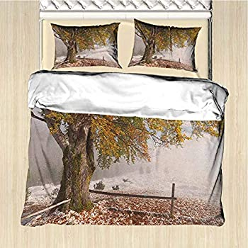 Image of alisoso (1 Duvet Cover + 2 Pillow Sham) Leaves Birches of A Big Tree in The First Fall of Snow December Country Blizzard Frozen Nature Bedding 3 Piece Duvet Cover Set Oversized King
