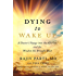 Dying to Wake Up: A Doctor's Voyage into the Afterlife and the Wisdom He Brought Back