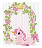 Chaoran 1 Fleece Blanket on Amazon Super Silky Soft All Season Super Plush Teen Girls Decor Collection Romantic Floral Arch Frame Roses Leaves with Unicorn Decorating Illustration Design Fabric Pink B