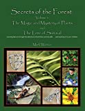 Secrets of the Forest: Volume 1 The Magic and Mystery of Plants
