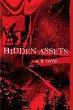 Hidden Assets, J. B. Davis, 0595199593