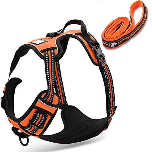 OLizee Reflective Nylon No-pull Dog Harness and Training Leash Set Padded Durable Adjustable(L, Orange (Seat Belt Outer Set)
