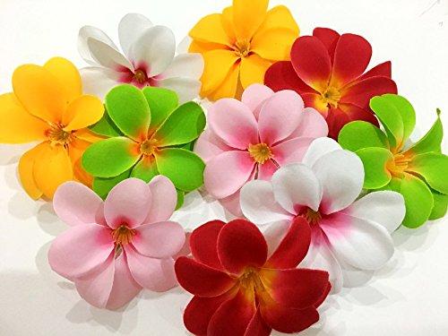 ICRAFY (50) Assorted Hawaiian Plumeria Frangipani Silk Flower Heads - 3