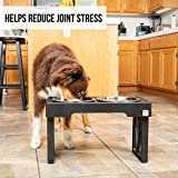 Pet Zone Designer Diner Adjustable Elevated Dog