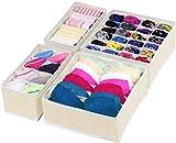 Simple Houseware Closet Underwear Organizer Drawer