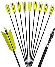 12pcs Archery Carbon Arrows 30 inch Target Flu Flu Arrows Spine 400 Mix Carbon Hunting Targeting Arrows with 4