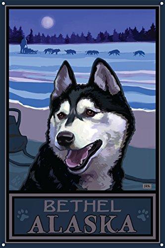 Bethel Alaska Sled Dog Heritage Metal Art Print by Joanne Kollman (12