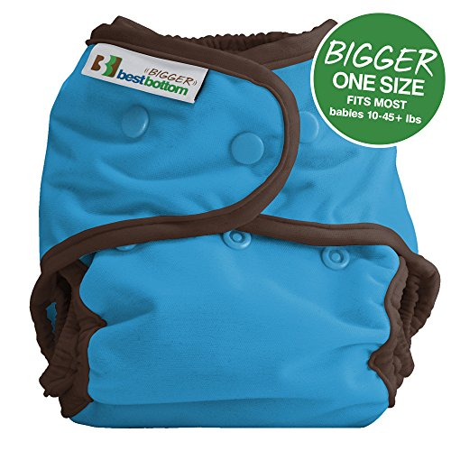 Bigger Best Bottom Reusable Cloth Diaper, Cookie Monster (Diaper Cookie)