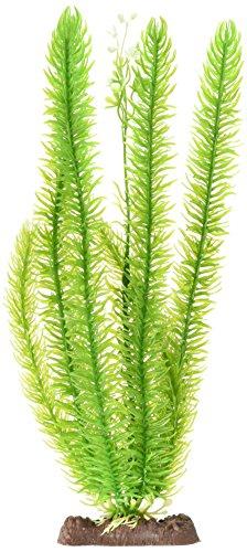 - Club Moss Extra Large Plant Aqua-Plant Sinkers