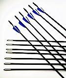 "GPP Archery Beginner's First Arrows (30"" Fiberglass Target Archery Arrows) - 12 Pack"
