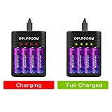 Deleepow Smart Battery Charger with AA Li-ion
