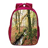 Woodland Decor Printing Backpack,Misty Autumn Woodland and Stream at Golitha Falls on Bodmin Moor in Cornwall Decorative for Kids Girls,11.8'Lx6.3'Wx15.7'H
