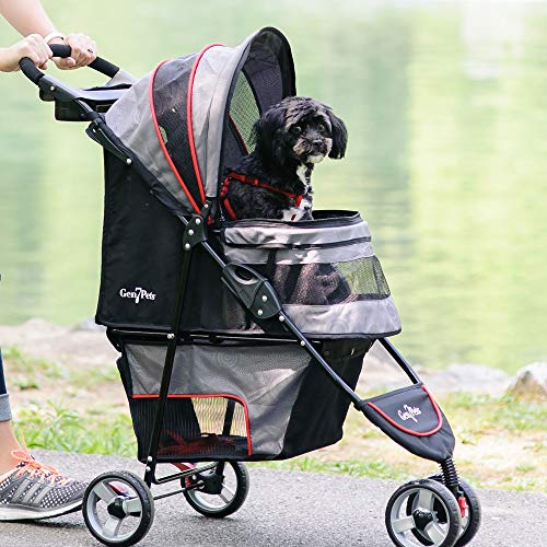 Are Dog Strollers Allowed in Stores?