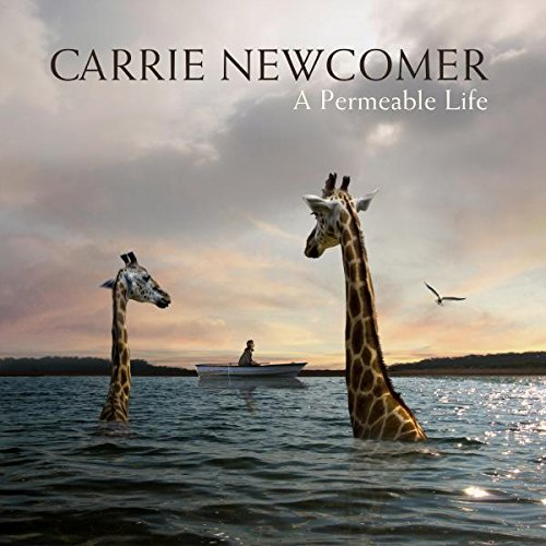 Cover of A Permeable Life