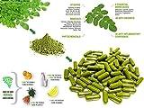 200 capsules / Pack 100% Natural Moringa Oleifera Leaf powder Capsule Dietary supplement herbal remedies