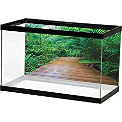 Denruny Fish Tank thermomenter Jungle,Deck Timber Jetty Exotic Getaway Wilderness Footpath Tropic Plants Rainforest, Pale Brown Green Underwater Scene Colorful Marine Coral
