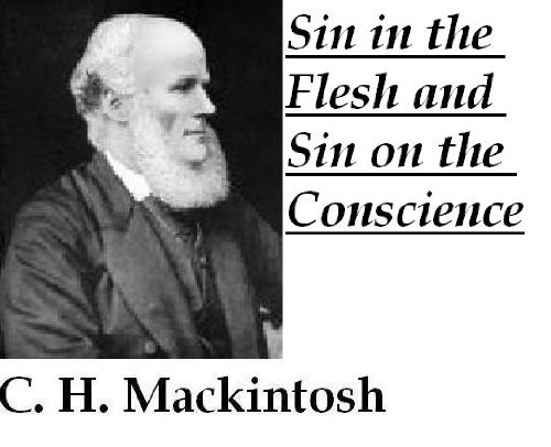 Sin in the Flesh and Sin on the Conscience