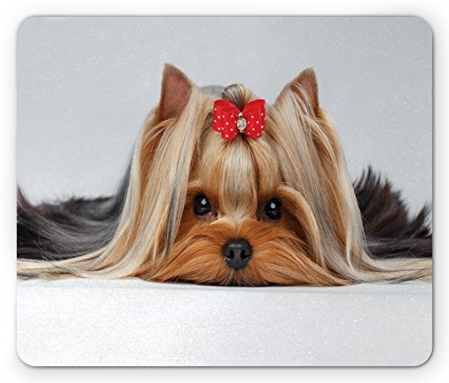 Ambesonne Yorkie Mouse Pad, Lying Yorkshire Terrier Cute Ribbon Yorkie Love Portrait a Dog, Standard Size Rectangle Non-Slip Rubber Mousepad, Pale Caramel Sand Brown