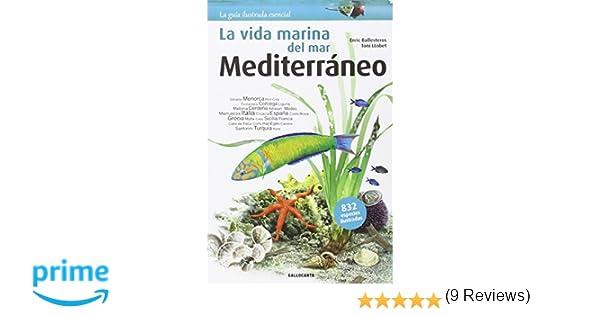 La Vida Marina del Mar, Mediterráneo: Amazon.es: Enric Ballesteros, Toni Llobet: Libros