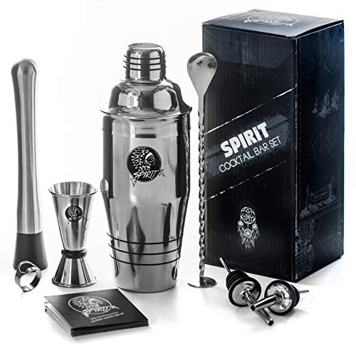 Spoon Steel Stainless Boston (The 9-in-1 bartenders kit | 24oz cocktail shaker with a full beverage preparation set for home & bar made drinks | stainless steel metal | dishwasher safe | martini shaker set & mojito kit by Spirit)