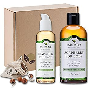 WINTER ONLY—Organic Face Wash & Body Wash Combo w/ Real Soapberries—Best Value Bath Set in Beautiful, Recyclable Gift Box, Naturally Nourish Dry, Sensitive Skin, Limited Supply, Peppermint—Tree To Tub