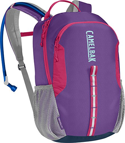 CamelBak Scout 50 oz Hydration Pack, Purple Sapphire/Azaela