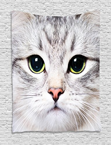 Cat Tapestry Decor , Cute Cat Print Kitten Kitty Closeup