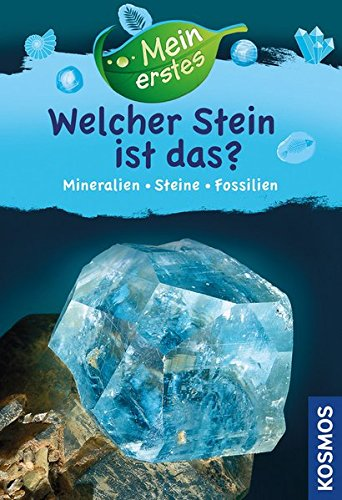 Mein erstes Welcher Stein ist das?: Mineralien, Gesteine, Fossilien