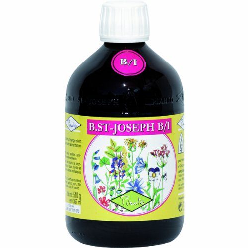 BSt-Joseph-BI-Pianto