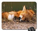 fox mouse pad - Fox Mouse Pad, Mousepad