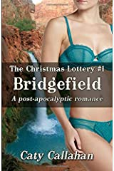 THE CHRISTMAS LOTTERY, BOOK 1: BRIDGEFIELD Paperback