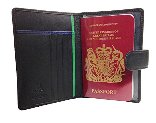 Visconti BD15 Multi Colored Passport Travel Holder/Wallet (Black/Green)
