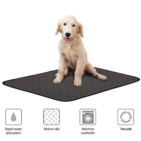 leegoal Almohadillas Lavables para orina de Mascotas, Reutilizables, para Entrenamiento de Cachorros, para