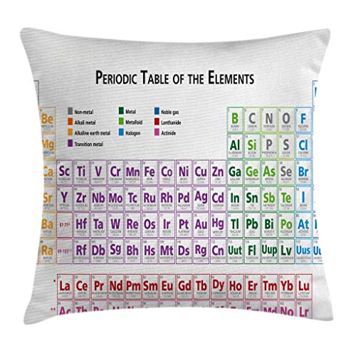Ambesonne Science Throw Pillow Cushion Cover, Chemistry Primary School Students Geek Nerd Lessons Classes Smart Kids Art Print, Decorative Square Accent Pillow Case, 16 X 16 Inches, Multicolor